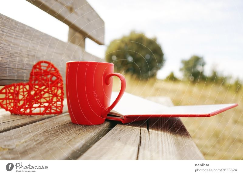 Red mug with coffee in a wooden bench outdoors in the morning Breakfast Hot drink Coffee Tea Winter Book Autumn Warmth Heart Delicious cup sunny fall Rustic