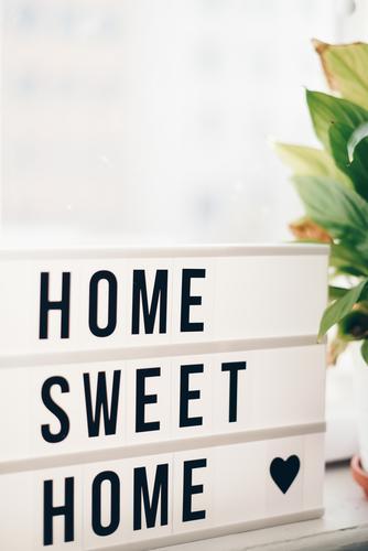 Plant House (Residential Structure) Living or residing Flat (apartment) Decoration Characters Heart Letters (alphabet) Box Cozy Arrange Foliage plant