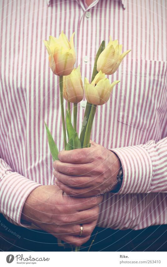 Thank you... Human being Masculine Man Adults Hand 1 45 - 60 years Plant Flower Tulip Blossom Shirt Ring Blossoming Friendliness Beautiful Romance Grateful
