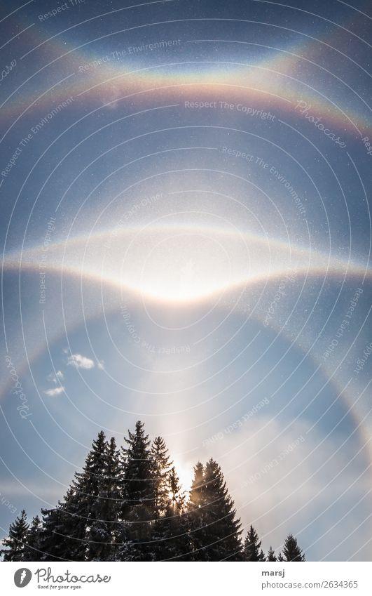Sky Nature Winter Illuminate Ice Weather Beautiful weather Uniqueness Hope Frost Phenomenon Humble Halo