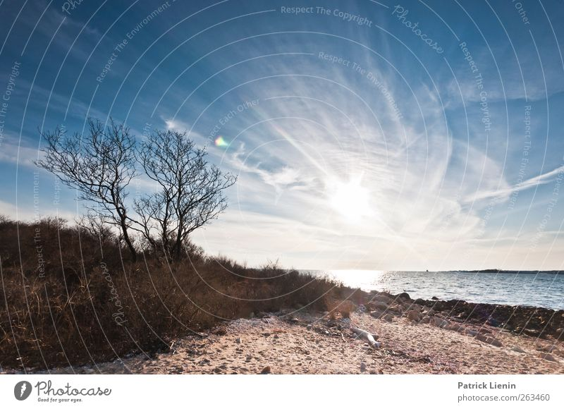 distant Environment Nature Landscape Plant Elements Sand Air Water Sky Sun Solar eclipse Sunrise Sunset Sunlight Spring Climate Weather Beautiful weather Wind
