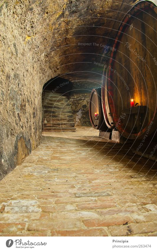 In the wine cellar ... Wine Wine cellar Stone Wood To enjoy Candlelight stone cellar Cellar arch Colour photo Interior shot Copy Space bottom