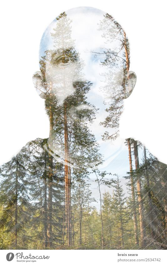 Man and Forest. Lifestyle Hair and hairstyles Face Healthy Meditation Vacation & Travel Adventure Freedom Mountain Science & Research Masculine Young man