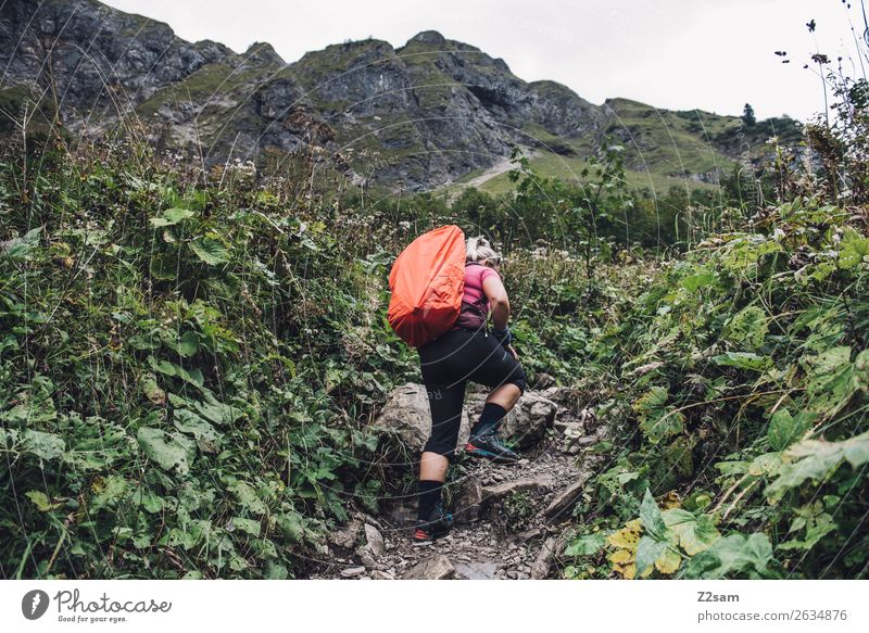 Nature Youth (Young adults) Young woman Landscape Mountain 18 - 30 years Adults Sports Going Leisure and hobbies Hiking Blonde Adventure Bushes Peak Alps