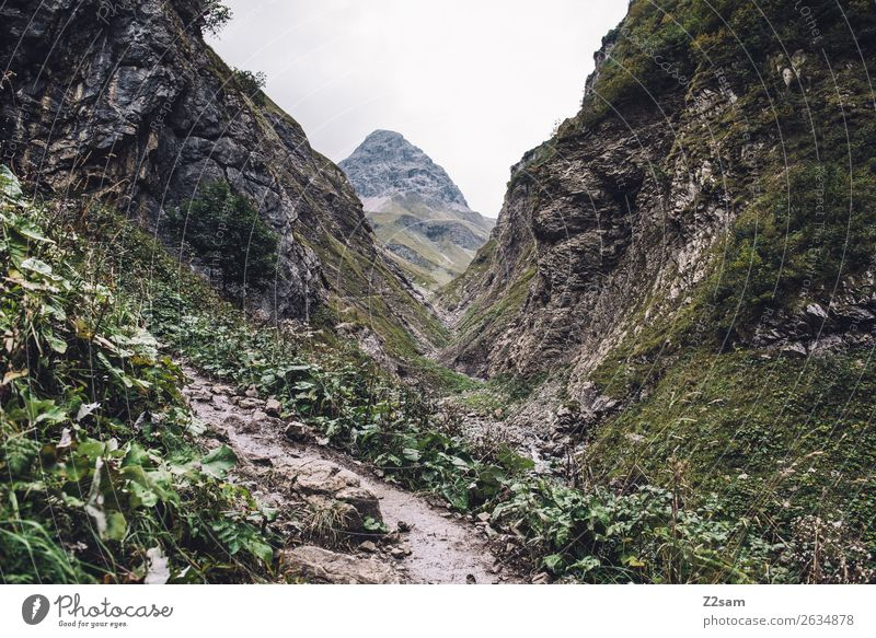 Ascent to the Kemptner Hut Mountain Hiking Nature Landscape Bad weather Alps Peak Gigantic Natural Green Adventure Leisure and hobbies Idyll Vacation & Travel