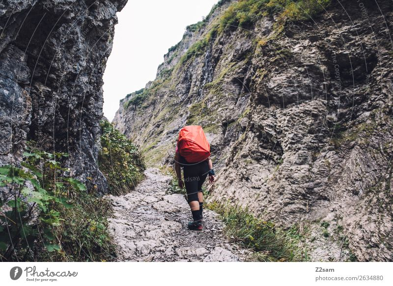 Nature Vacation & Travel Youth (Young adults) Young woman Landscape Red Mountain 18 - 30 years Adults Lanes & trails Rock Going Hiking Power Adventure Alps