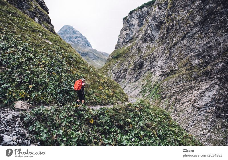Nature Youth (Young adults) Young woman Landscape Mountain Adults Lanes & trails Sports Rock Going Hiking Power Idyll Adventure Bushes Footpath