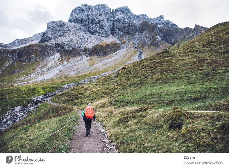 Nature Vacation & Travel Youth (Young adults) Young woman Green Landscape Loneliness Mountain 18 - 30 years Adults Autumn Sports Going Hiking Blonde Power