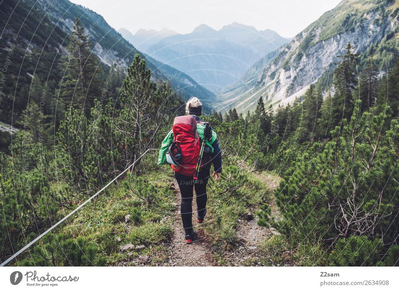 Young woman crossing the Alps Vacation & Travel Adventure Freedom Hiking Youth (Young adults) 18 - 30 years Adults Nature Landscape Beautiful weather Bushes