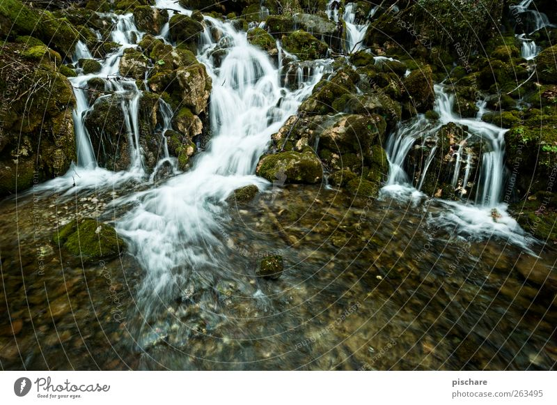 Nature (without diploma) Landscape Water Moss Brook Waterfall Exotic Colour photo Exterior shot Long exposure Deep depth of field Wide angle