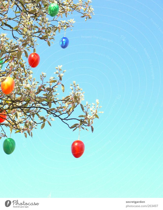 Blue Green Tree Red Plant Yellow Bushes Easter Kitsch Easter egg Odds and ends
