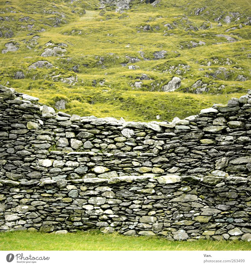 Mau(r)erwerk Environment Landscape Plant Grass Meadow Hill Rock Ireland Ruin Wall (barrier) Wall (building) Stone wall Old Gray Green Protection Colour photo