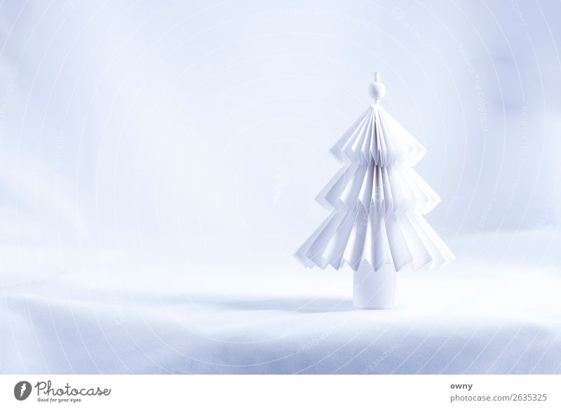 white tree Environment Landscape Winter Ice Frost Snow Tree Deserted Paper Feasts & Celebrations Bright Clean White Emotions Moody Love Belief Design