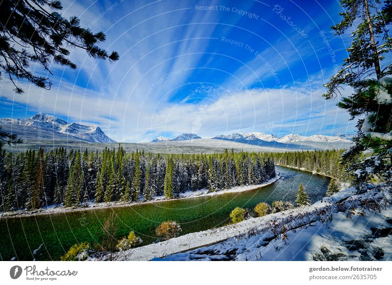 #Canada/ winter dreams Environment Nature Landscape Plant Elements Water Sky Clouds Winter Tree Wild plant Forest Mountain Snowcapped peak River bank Stone