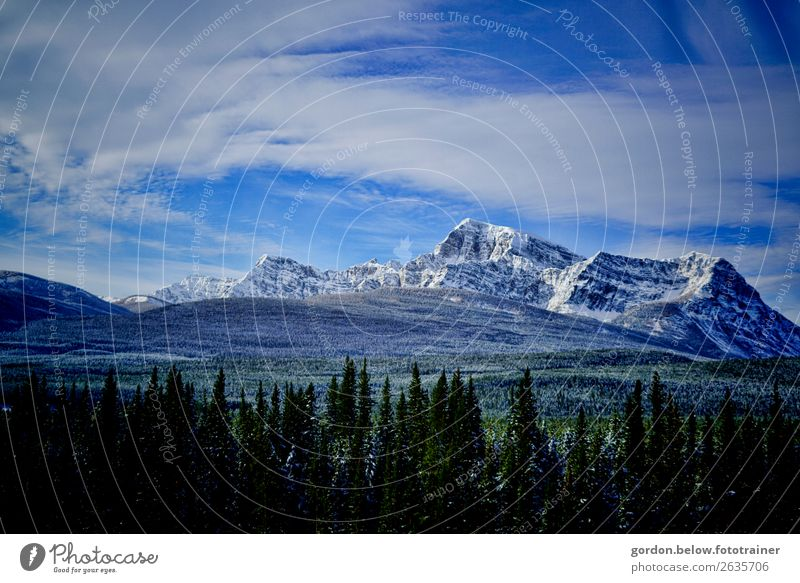 #Canada Rocky Mountains Nature Landscape Plant Elements Earth Sky Clouds Winter Beautiful weather Tree Peak Snowcapped peak Deserted Exceptional Gigantic