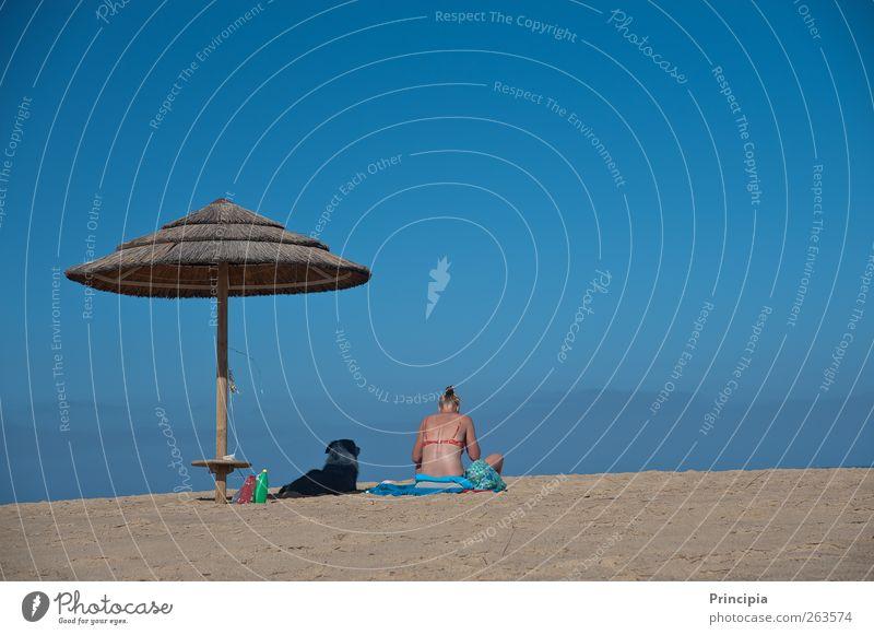 two on the beach Wellness Relaxation Vacation & Travel Far-off places Summer Sunbathing Beach Ocean Feminine Woman Adults Skin Back 1 Human being Bikini Dog Sit
