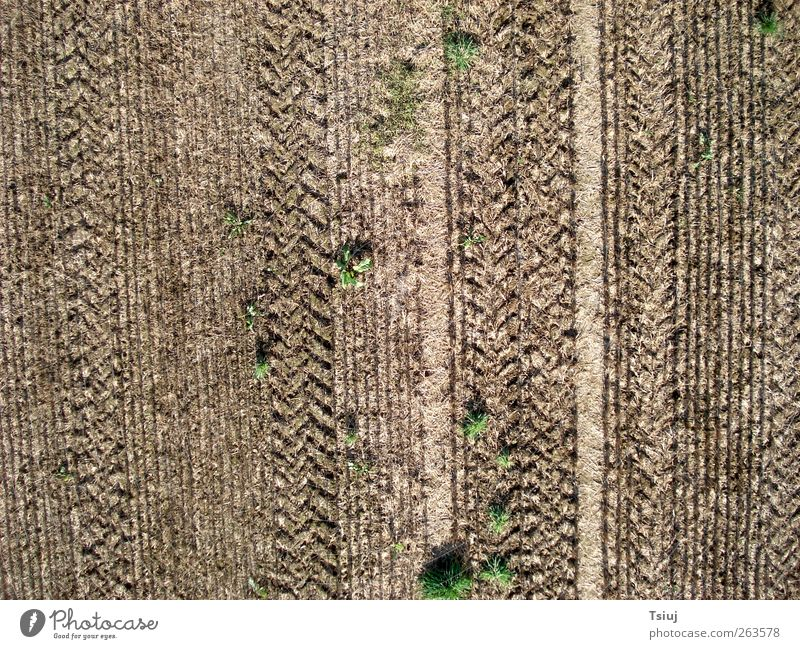 acreage Landscape Grass Field Tractor Perspective Cape Kite Aerial Photography Aerial photograph Furrow Line Skid marks Agriculture Colour photo Exterior shot