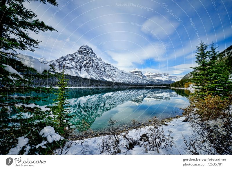 frost whisper Nature Landscape Plant Elements Earth Water Sky Clouds Beautiful weather Tree Bushes Rock Snowcapped peak Lakeside Observe Looking Exceptional
