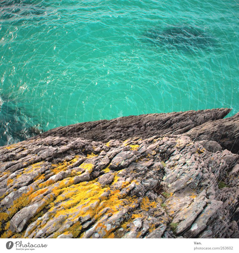 leap into the blue Vacation & Travel Summer vacation Environment Nature Water Moss Rock Waves Coast Ocean Stone Fresh Wet Blue Yellow Gray Turquoise