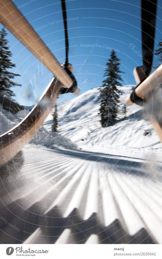 Now, keep going at full throttle! Vacation & Travel Tourism Adventure Winter Snow Winter vacation Sledge Toboggan run Sledding Nature Cold Athletic Blue Speed