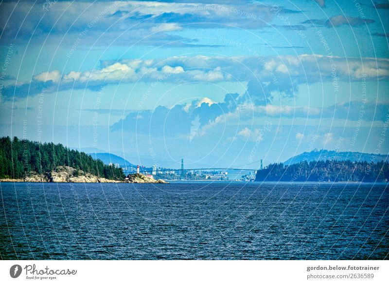 #Canada /Vancouver Island/British Columbias Nature Landscape Plant Elements Earth Water Sky Clouds Sunlight Autumn Beautiful weather Tree Wild plant Rock