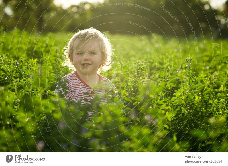 Human being Child Nature Plant Green Summer Environment Spring Laughter Head Field Blonde Infancy Happiness Cute Curiosity
