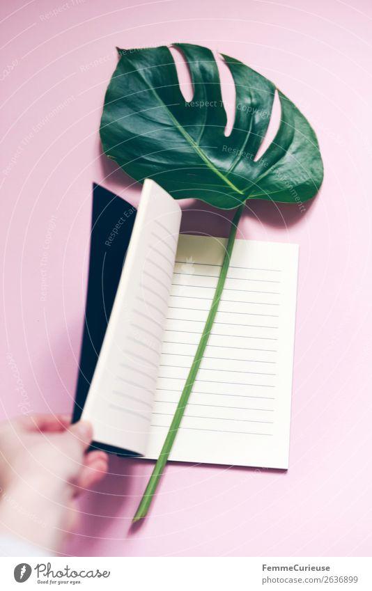 Plant Leaf Pink Decoration Esthetic Empty Paper Stalk Stationery Notebook Pastel tone Lined Monstera