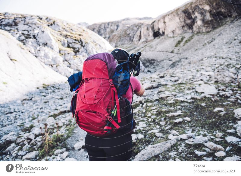 Nature Vacation & Travel Youth (Young adults) Young woman Summer Red Loneliness Mountain 18 - 30 years Adults Lanes & trails Sports Hiking Adventure