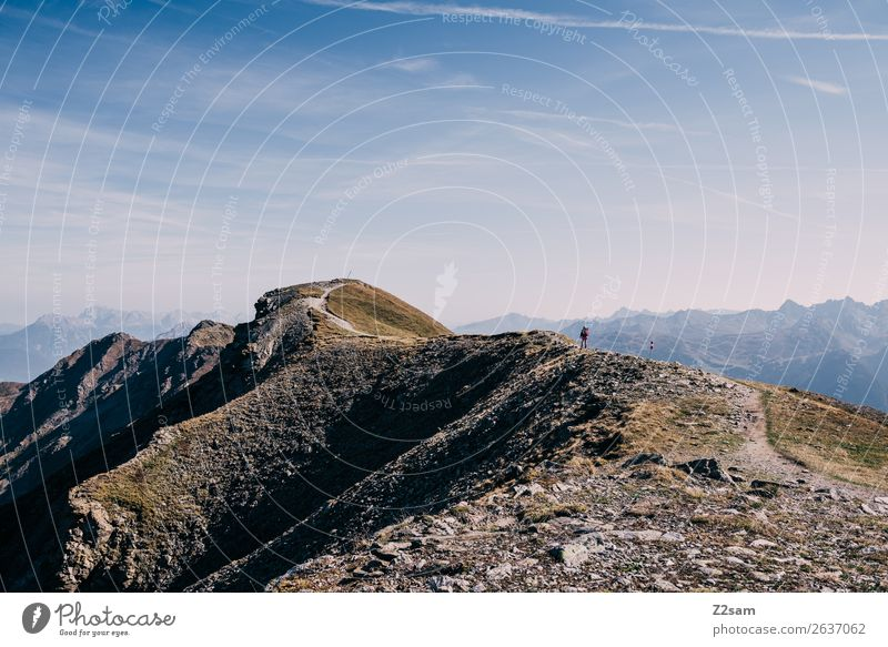 Hikers on the Venet summit | E5 Adventure Mountain Hiking Human being Nature Landscape Summer Beautiful weather Alps Peak Tall Athletic Loneliness Freedom
