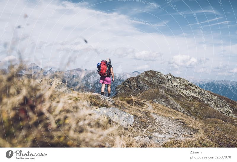 Vacation & Travel Nature Youth (Young adults) Young woman Summer Landscape Loneliness Mountain Grass Freedom Hiking Power Adventure Beautiful weather Peak Alps