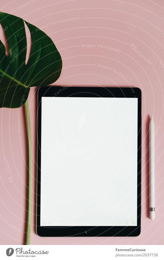 Green White Pink Design Modern Communicate Technology Creativity Future Empty Paper Write Digital Advancement Stationery Tablet computer