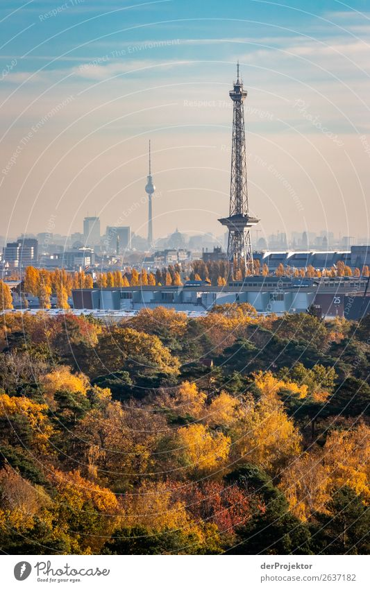 Radio tower and television tower on a photo in autumn Vacation & Travel Trip Adventure Freedom Sightseeing City trip Mountain Hiking Environment Landscape