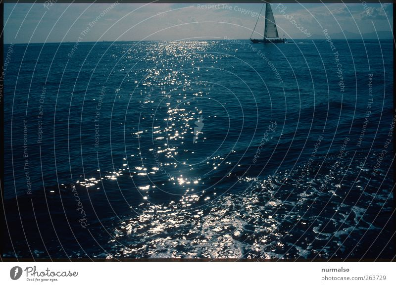 Crosswise Freedom Summer Ocean Sailing Nature Water Navigation Sailboat Glittering Esthetic Uniqueness Tourism Morning Light Shadow Contrast Silhouette