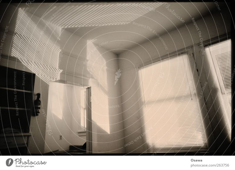 Light and shadow Building Calm Room Window Venetian blinds Shelves Shadow play Black & white photo Interior shot Deserted Sunlight Ceiling Wall (building)