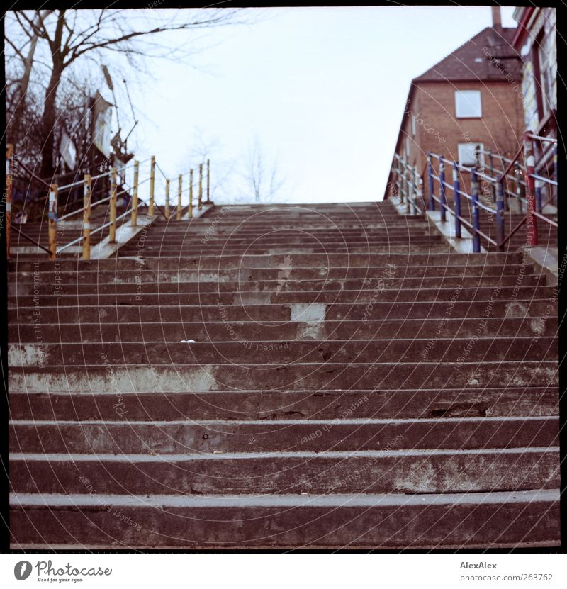 Descent / Ascent House (Residential Structure) Banister Cloudless sky Tree Stairs Town house (City: Block of flats) Lanes & trails Concrete Metal Old Authentic