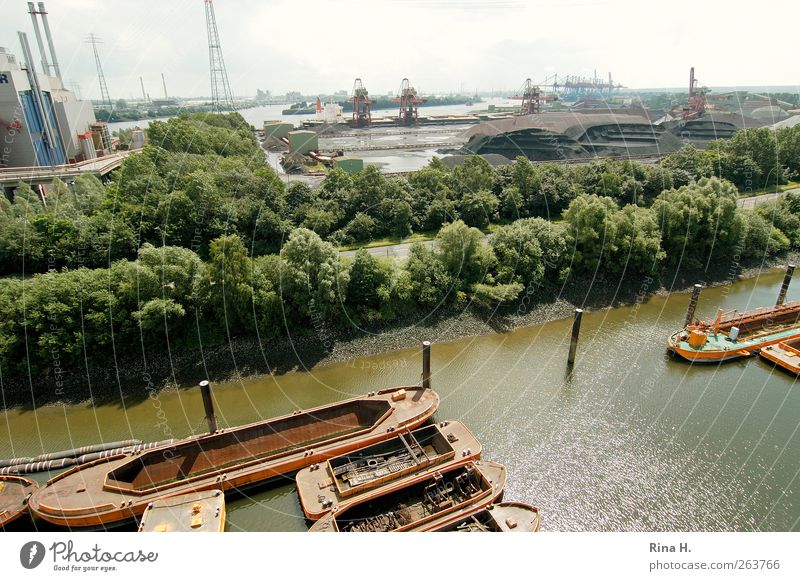 Port of Hamburg Industry Summer Tree River Port City Navigation Inland navigation Watercraft Harbour Authentic Elbe Economy Ore Colour photo Deserted