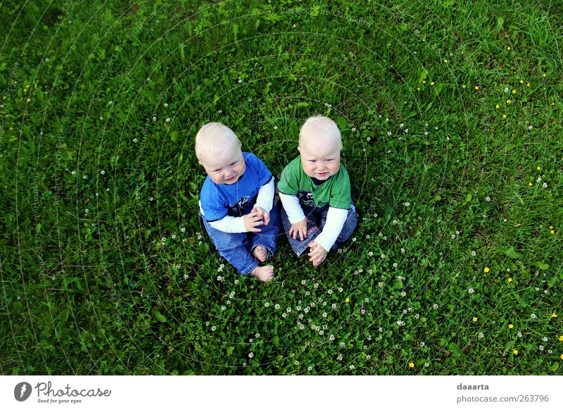 brothers Human being Child Baby Boy (child) 2 1 - 3 years Toddler Nature Summer To enjoy Crawl Smiling Simple Healthy Friendliness Small Green
