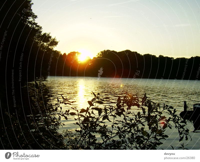 Sunset in Ascheberg Relaxation Trip Far-off places Lakeside Environment Nature Plant Water Sky Sunrise Summer Park Forest To enjoy Romance Colour photo