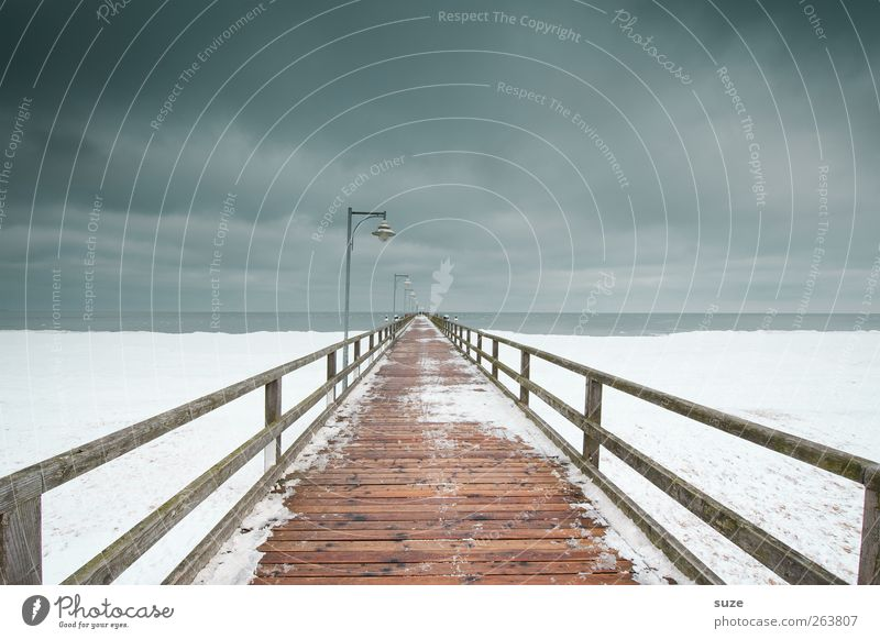 Nature Ocean Loneliness Winter Landscape Environment Dark Cold Snow Lanes & trails Coast Wood Gray Horizon Ice Exceptional
