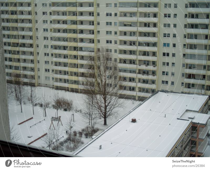 window look Winter Tower block Window Kindergarten Living or residing Prefab construction lonely tree