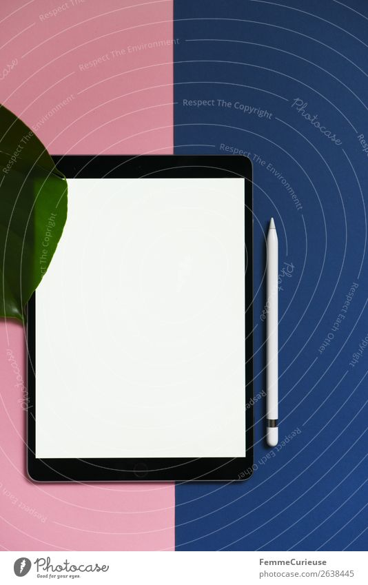 Tablet on pink and blue background Technology Entertainment electronics Advancement Future Stationery Paper Piece of paper Communicate Tablet computer Monstera