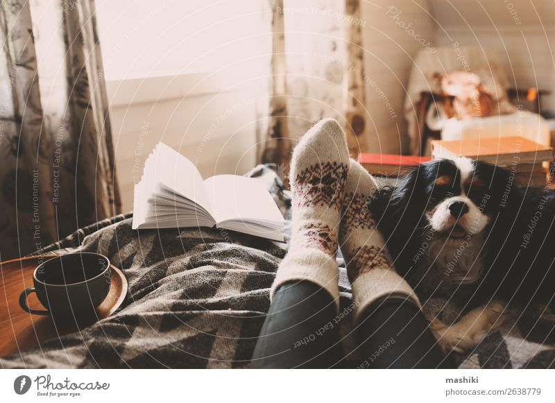 cozy winter day at home with cup of hot tea Tea Lifestyle Relaxation Leisure and hobbies Reading Winter House (Residential Structure) Friendship Feet Book