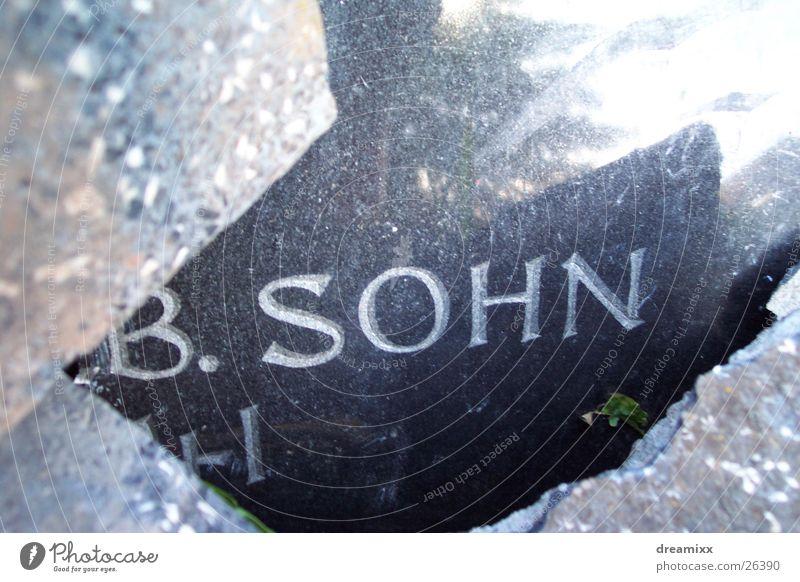 Son in the grave Grave Tombstone Historic Sacrifice Death stenic roar