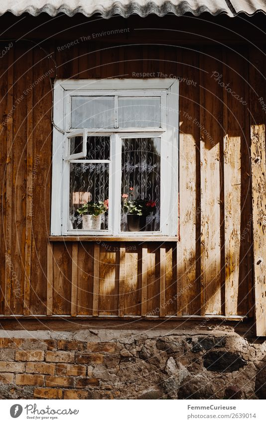 Facade and windows of an old house in Lithuania House (Residential Structure) Living or residing Wooden house corrugated roof Window Old Curtain Window board