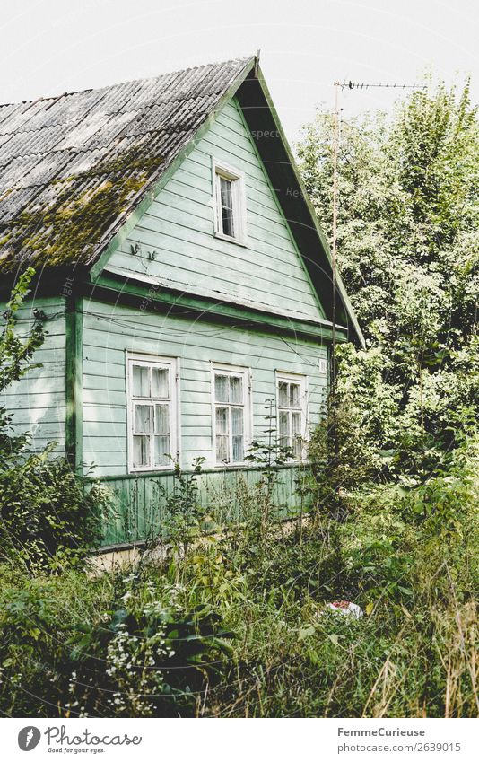 Mint green old house in Lithuania - surrounded by nature Village Small Town House (Residential Structure) Detached house Living or residing Apartment Building