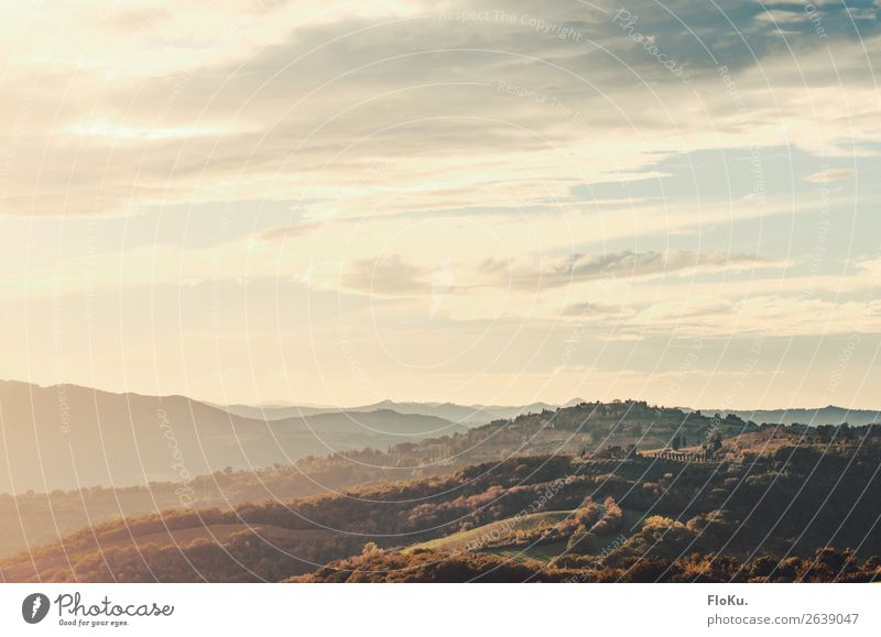 Hills in Tuscany in the evening light Vacation & Travel Tourism Adventure Far-off places Freedom Italy Mediterranean Environment Nature Landscape Elements Air