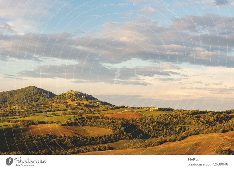 Hills of Tuscany in the warm autumn light Vacation & Travel Evening Colour photo Exterior shot Mediterranean Travel photography Wanderlust Italy Green Blue