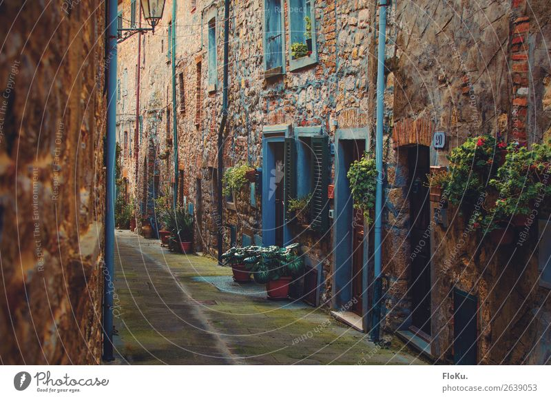 Narrow alley in Tuscany | 600 Vacation & Travel Tourism canneto Italy Europe Village Downtown Old town Deserted House (Residential Structure) Manmade structures