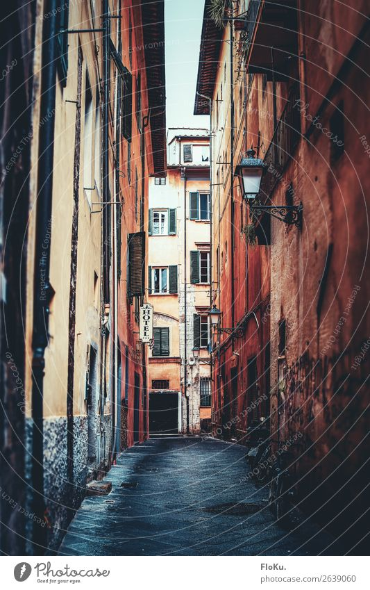 Vacation & Travel Old Town Street Architecture Lanes & trails Building Tourism Facade Trip Rain Retro Europe Authentic Wet Italy
