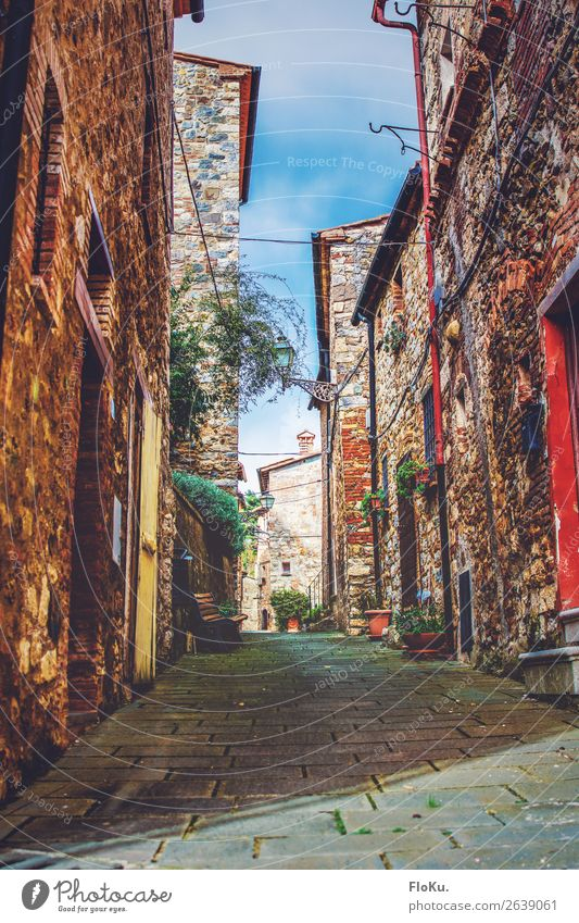 Tuscan village Vacation & Travel Tourism Castelnuovo di Val di Cecina Italy Europe Village Old town House (Residential Structure) Manmade structures Building